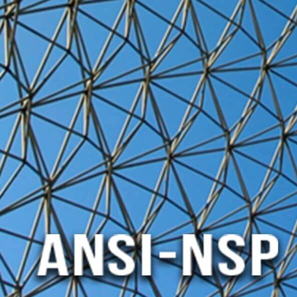 The logo for the ANSI-NSP program, featuring a blue grid background indicating nanotechnologies.