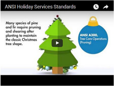 ANSI_Holiday_Services_Standards